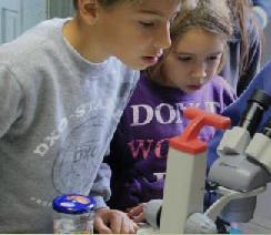 taller interactiu ciencia